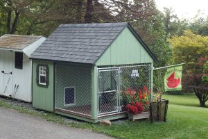 Dog kennel Susquehanna Outdoors